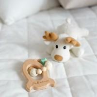 Žaislai ir priežiūra